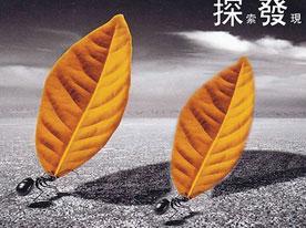 金融企业商标设计,深圳商标设计